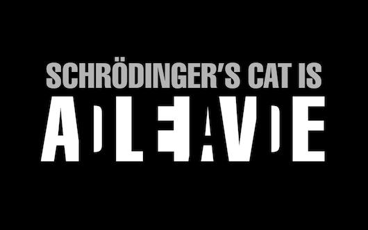 Schrödingers Katze ist tot und lebendig zugleich