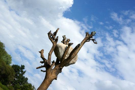 Documenta 13 - Bronzebaum von Giuseppe Penone